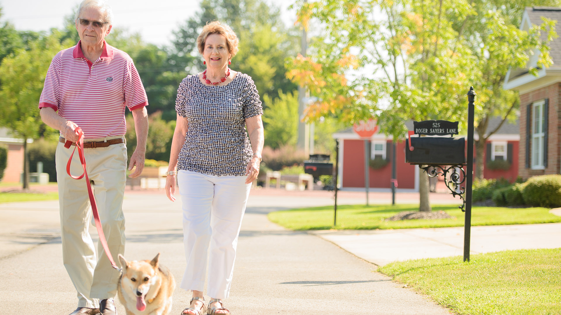 A smiling Caucasian couple walk a dog through a neighborhood