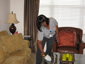 Cleaning lady cleaning